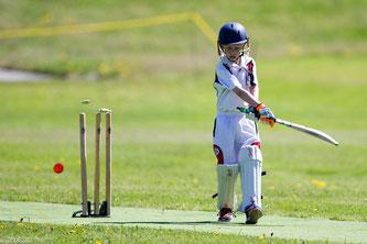 junior cricketer